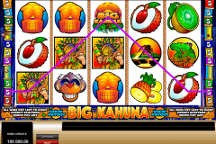 big kahuna microgaming kolikkopelit