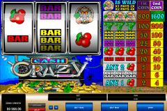 cash crazy microgaming kolikkopelit