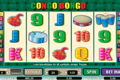 congo bongo amaya kolikkopelit