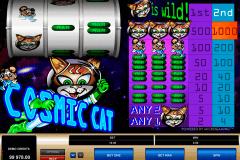 cosmic cat microgaming kolikkopelit