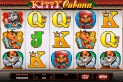 kitty cabana microgaming kolikkopelit