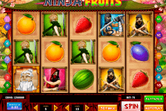 ninja fruits playn go kolikkopelit