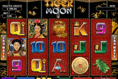 tiger moon microgaming kolikkopelit