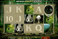 untamed giant panda microgaming kolikkopelit