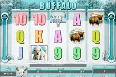 white buffalo microgaming kolikkopelit