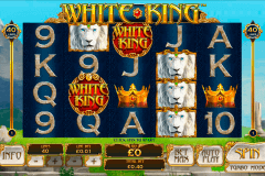 white king playtech kolikkopelit