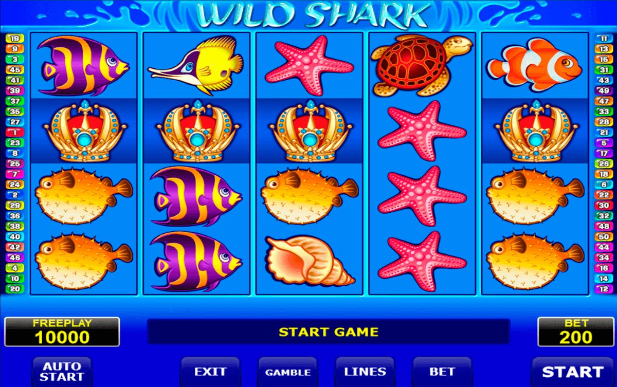 wild shark amatic kolikkopeli